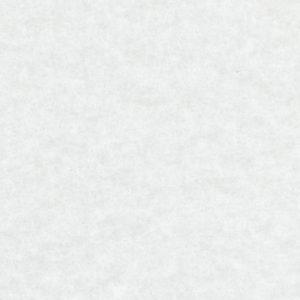 ES 1100 White