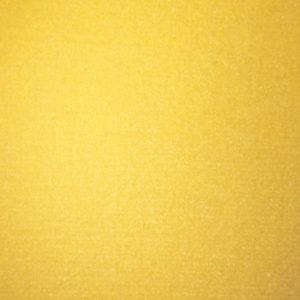 EV 3352V Yellow