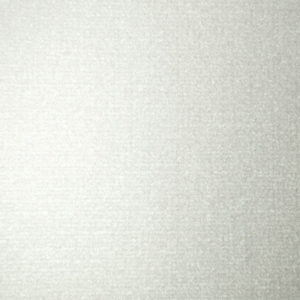 EV 8810V Silver