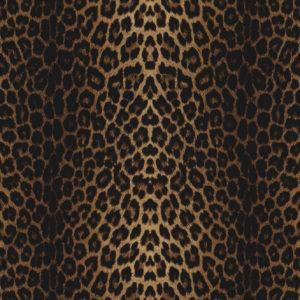 ExpoLook Leopard
